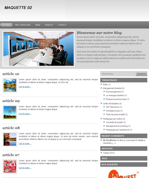 THEME 02 developpeur de blog