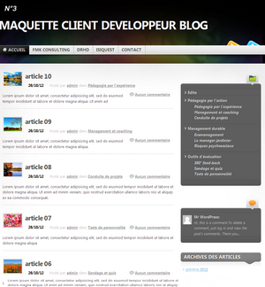 THEME 03 developpeur de blog