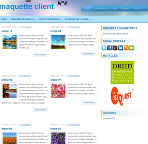 THEME 04 pour developpeur blog fmk consulting
