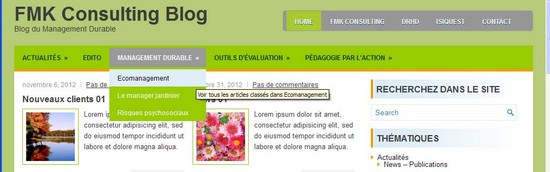 maquette menu haut du blog consultant