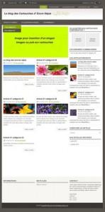 maquette blog pour dynamiser boutique en ligne