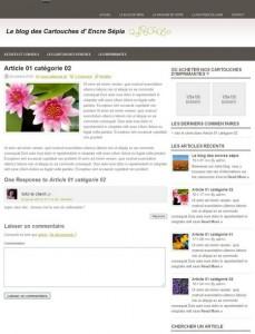 presentation blog dynamiser site marchand